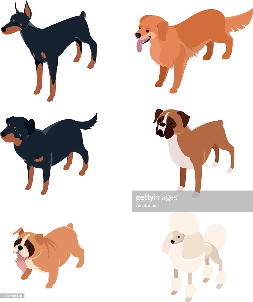 Collection of isometric dogs1