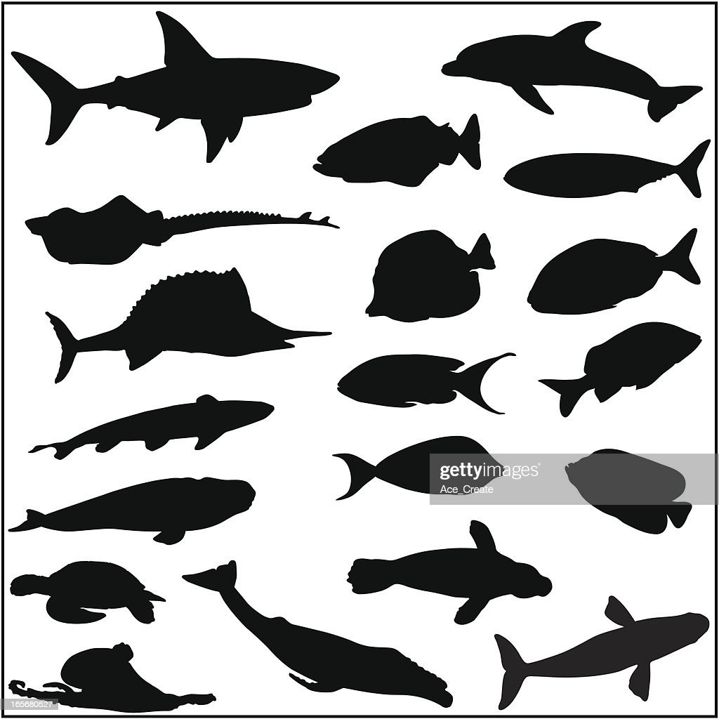 Collection of many fish and sea life silhouettes : stock illustration
