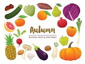 Collection of seasonal fruits and vegetables. Autumn time collection. Vector EPS10 illustration.