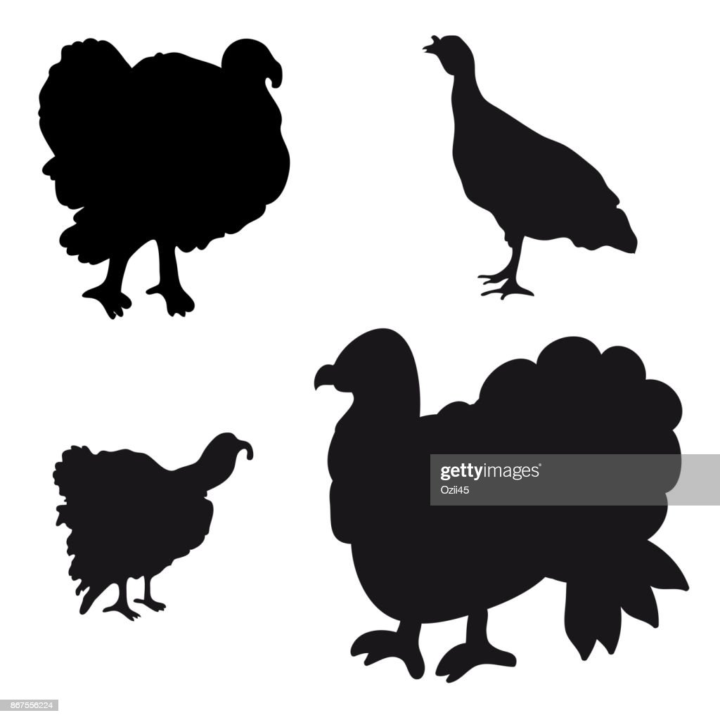 Collection of silhouettes of turkeys.