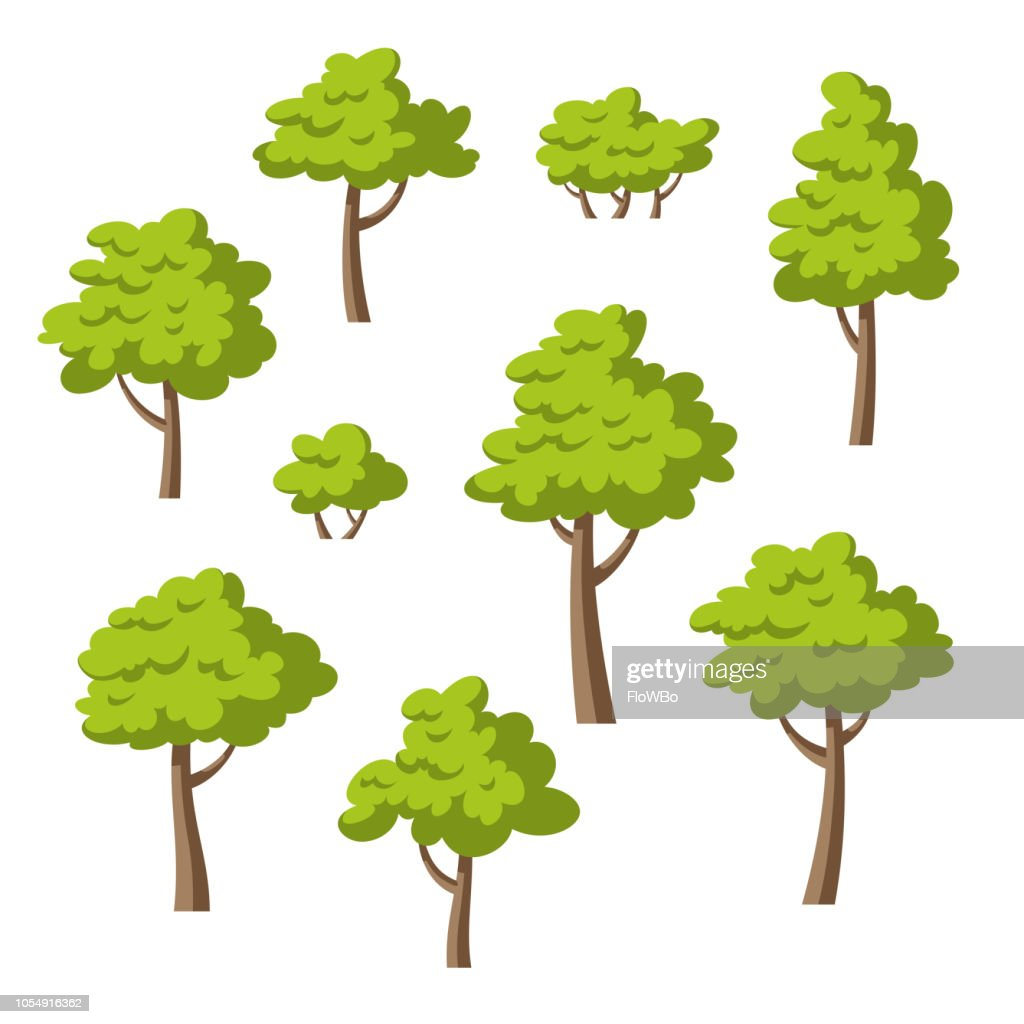 Collection Of Some Different Trees And Bushes