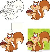 Collection of Squirrel - 1