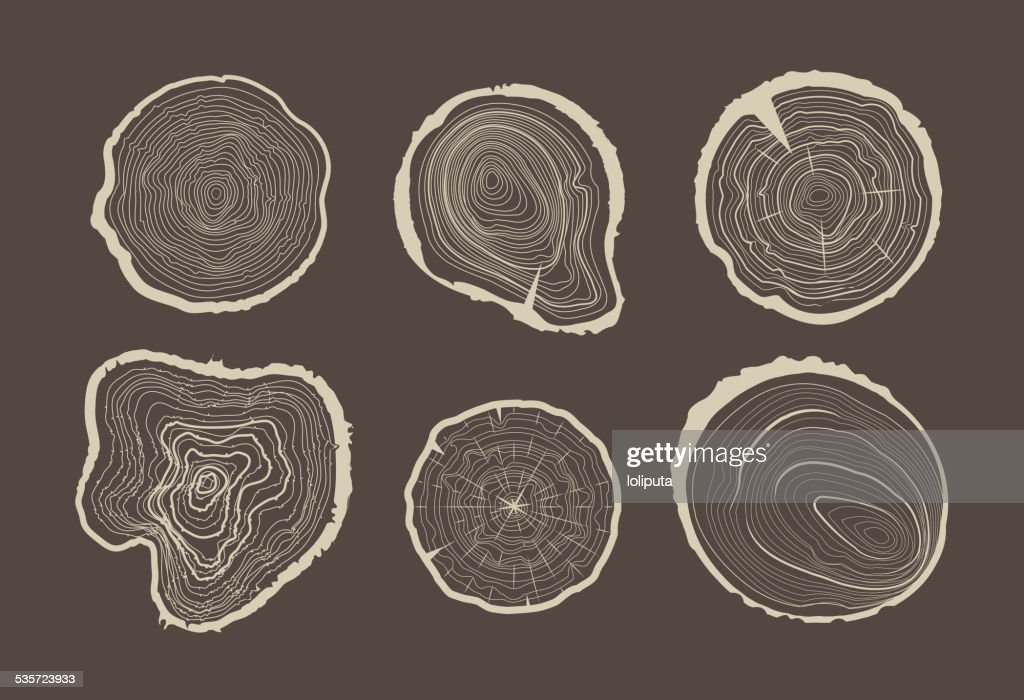 Collection of tree-rings.
