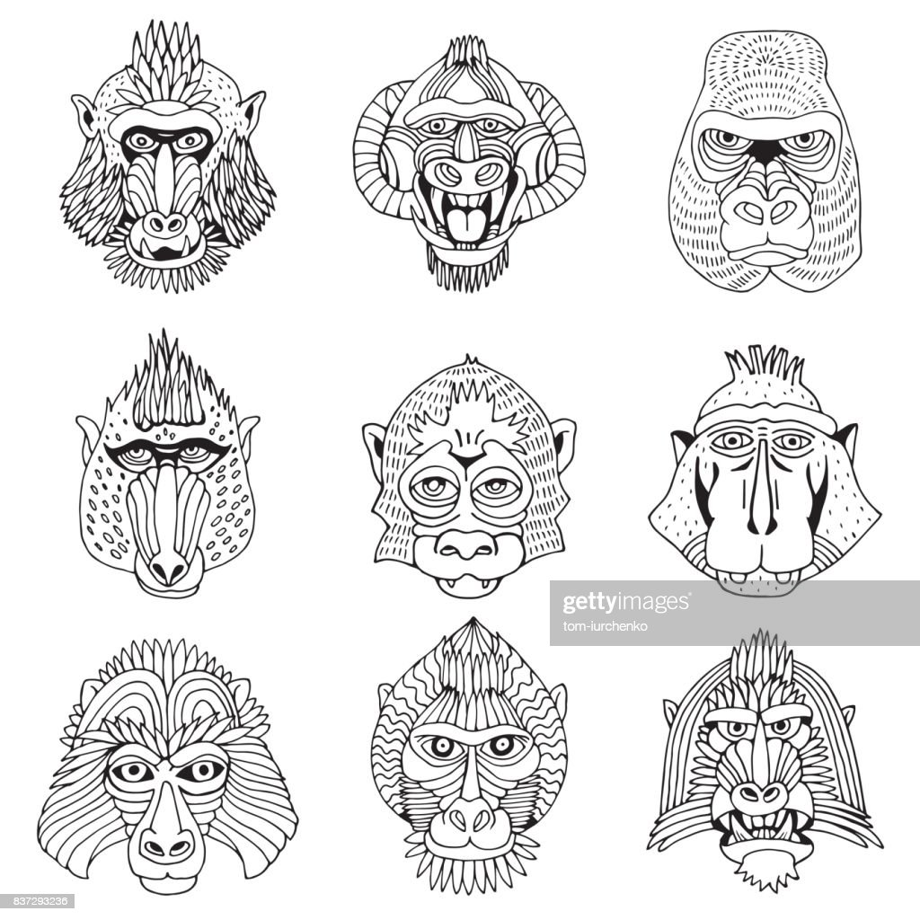 Collection of Various Monkey Faces. Doodle Cartoon Face of Primate on White Background. Hand Drawn Black and White illustration.
