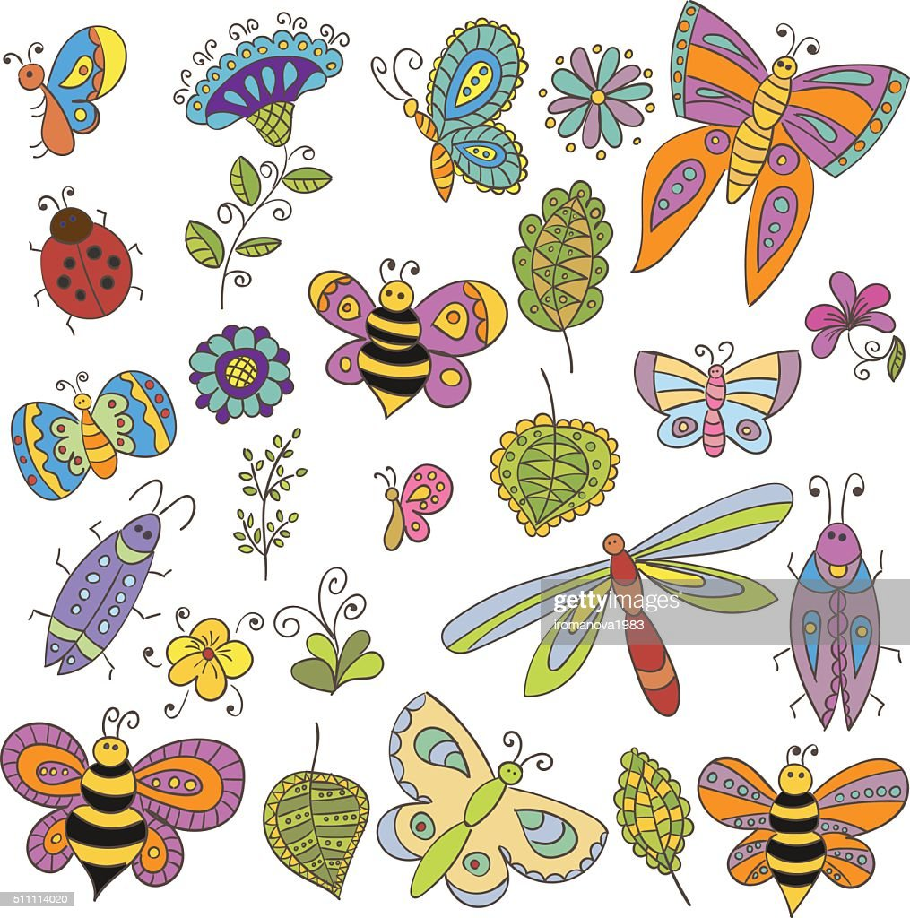 Collection of vector bugs, butterfly, leaves and flowers for design