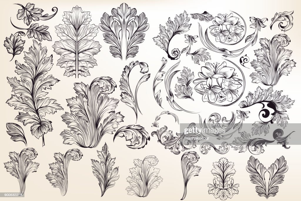 Collection of vector decorative floral elements in vintage style