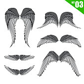 003 Collection of wings design element vector illustration eps10