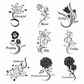 Collection-of-outlined-flowers