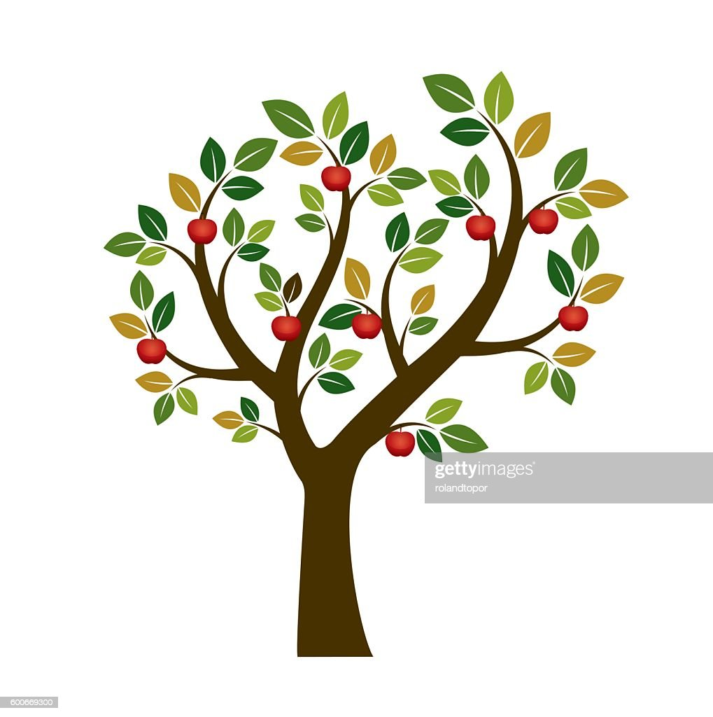 Color Apple Tree. Vector Illustration. Nature and Garden