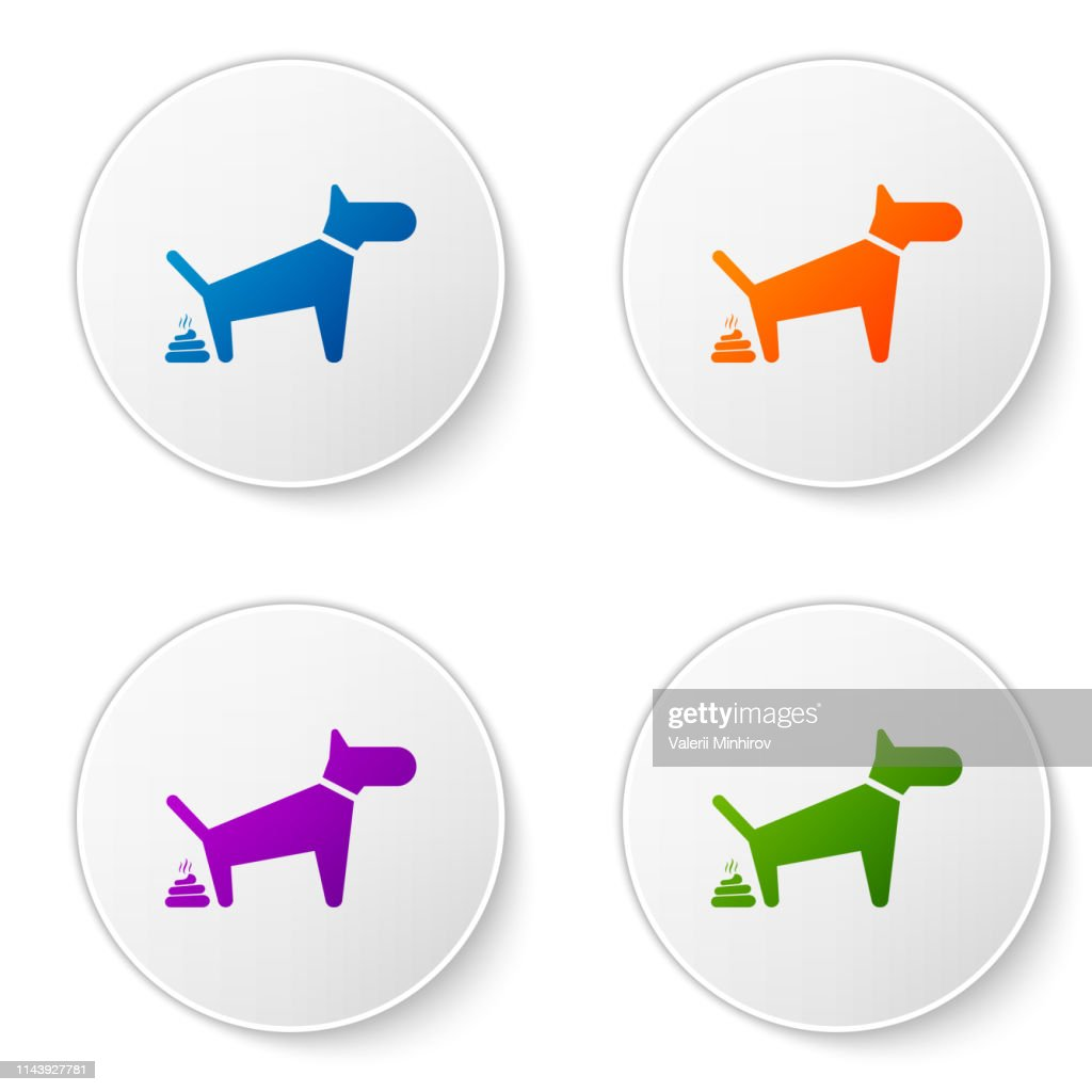 Color Dog pooping icon isolated on white background. Dog goes to the toilet. Dog defecates. The concept of place for walking pets. Set icons in circle buttons. Vector Illustration