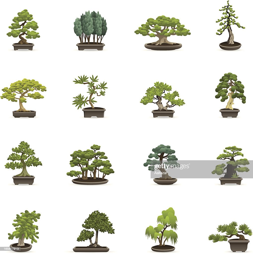 Color Icons - Bonsai Trees