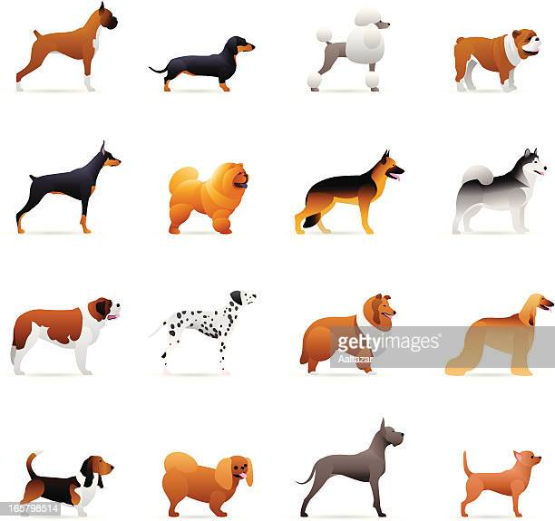 Color Icons - Dogs