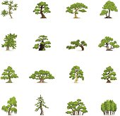 Color Icons - Green Trees