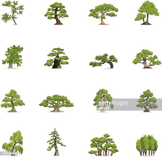 色のアイコン-緑の木々 - アカシア点のイラスト素材/クリップアート素材/マンガ素材/アイコン素材