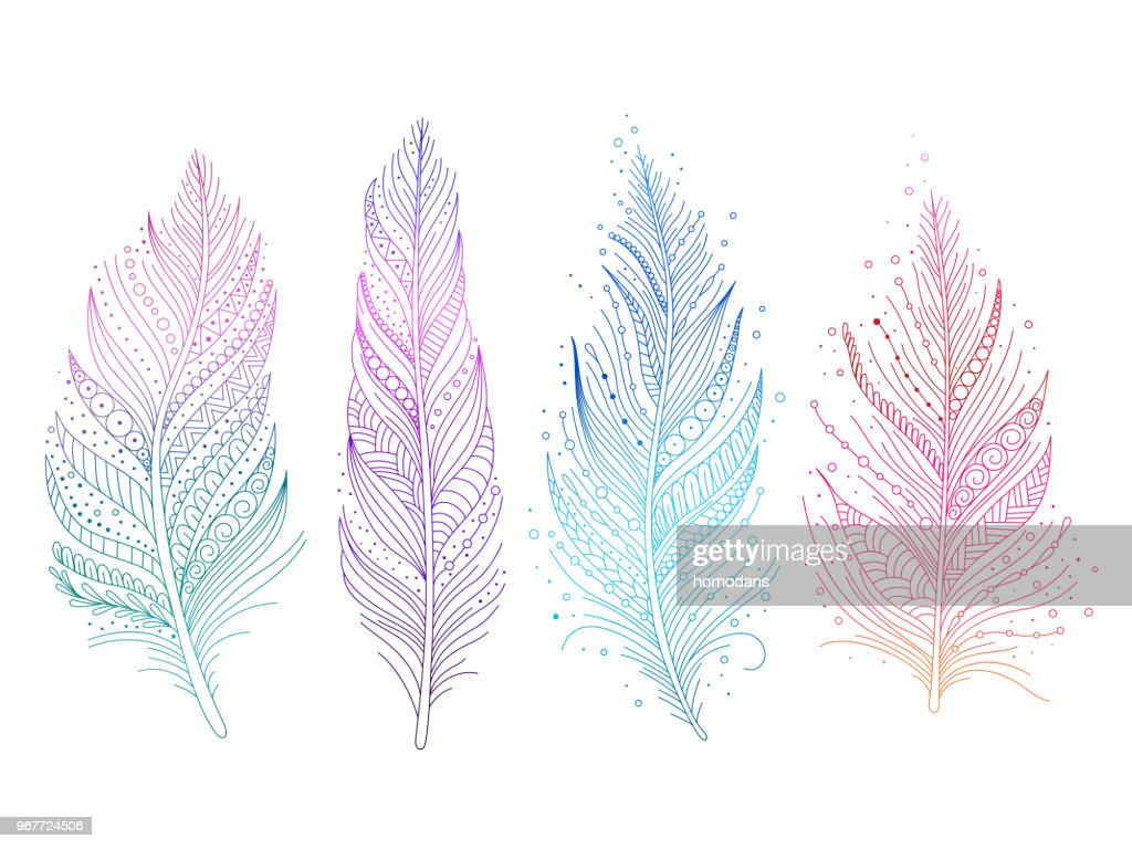 Colored bird feathers