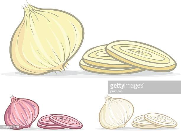 colored illustrations of onions - onion stock illustrations, clip art, cartoons, & icons