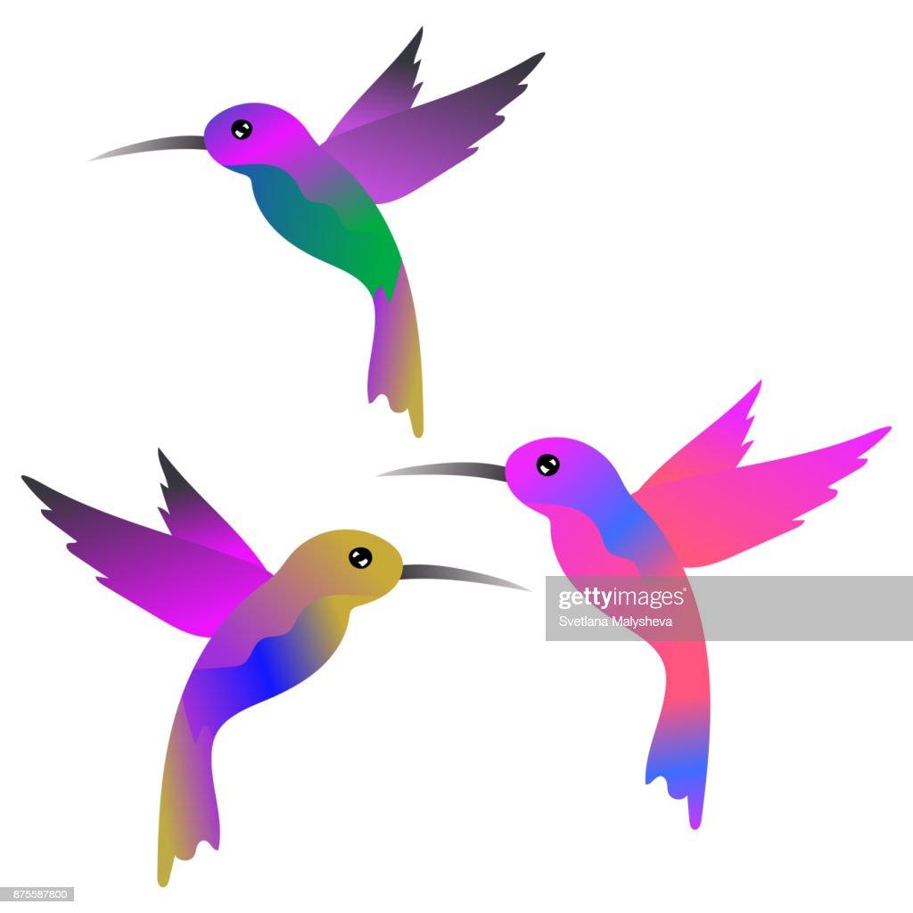 Colorful bright hummingbirds