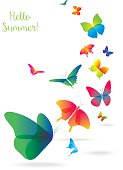 Colorful Butterflies Isolated on White Background.