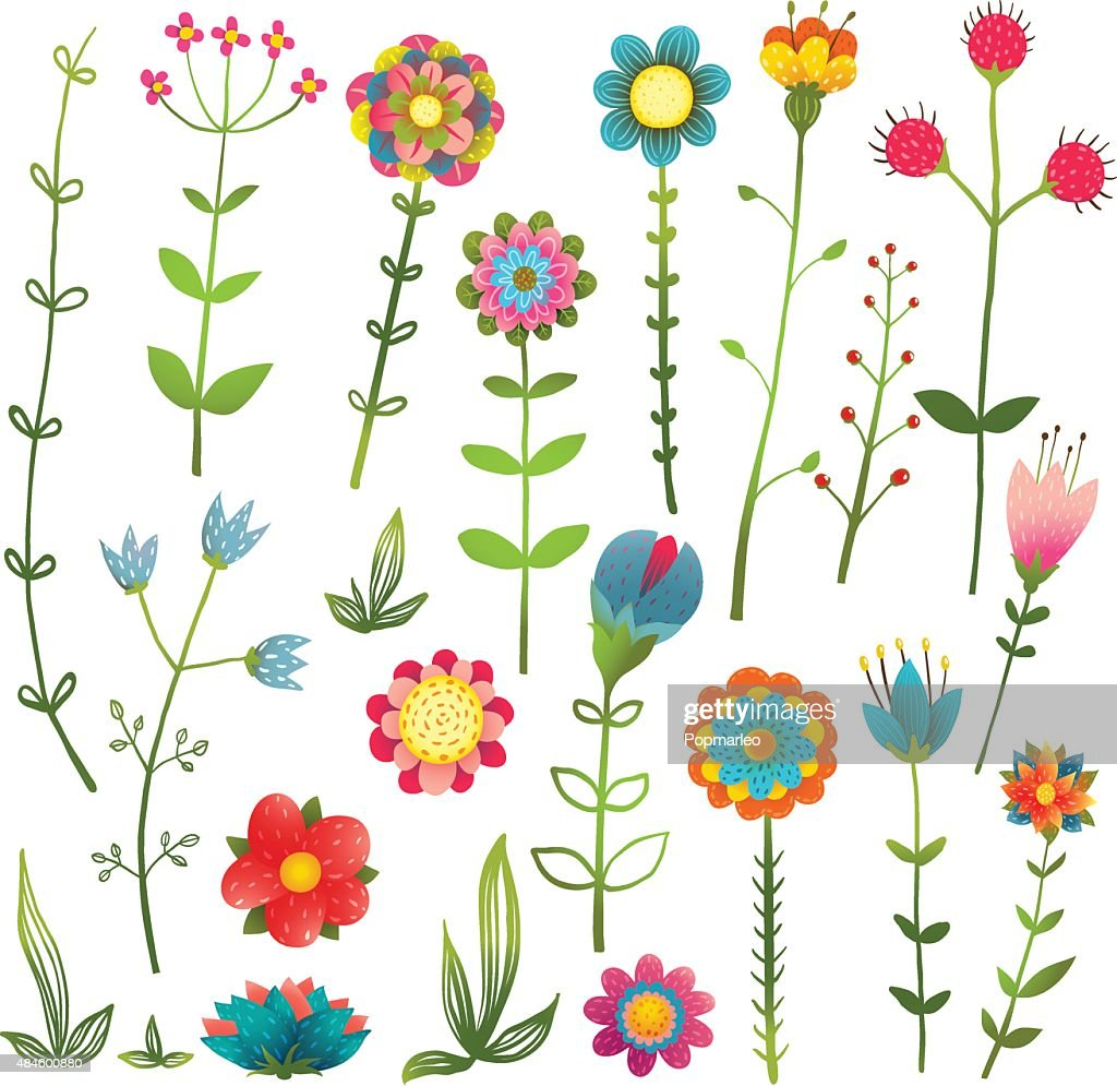 Colorful Cartoon Wild Flowers Isolated Collection