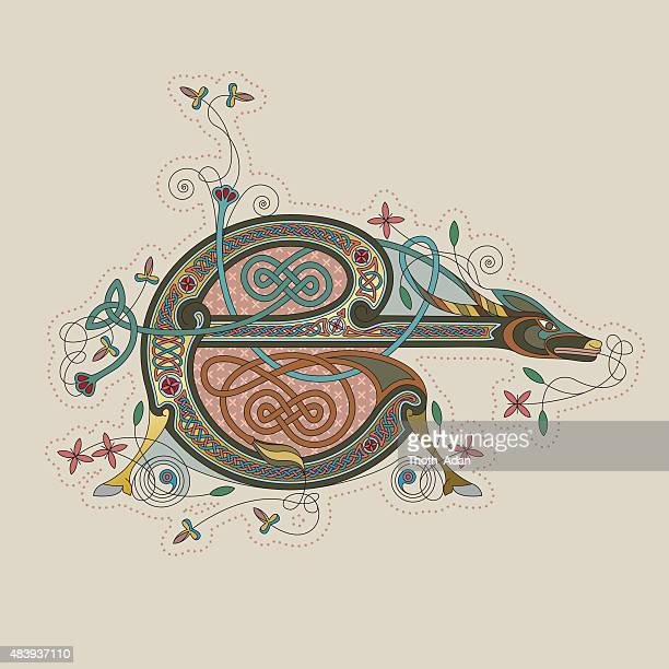 colorful celtic illumination of the initial leter e - book of kells stock illustrations