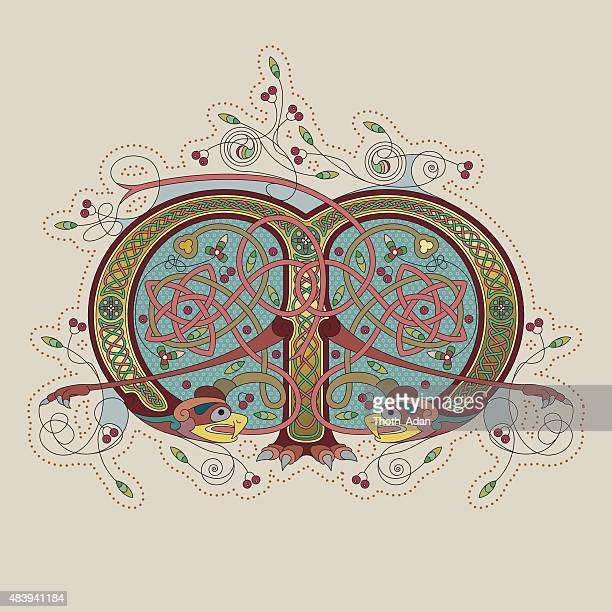 colorful celtic illumination of the initial leter m - book of kells stock illustrations