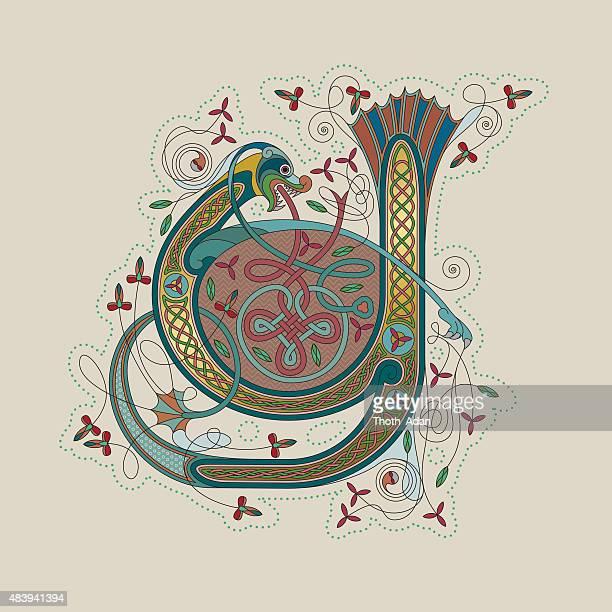 ilustraciones, imágenes clip art, dibujos animados e iconos de stock de colorido celtic iluminación de las primeras leter y - enredadera