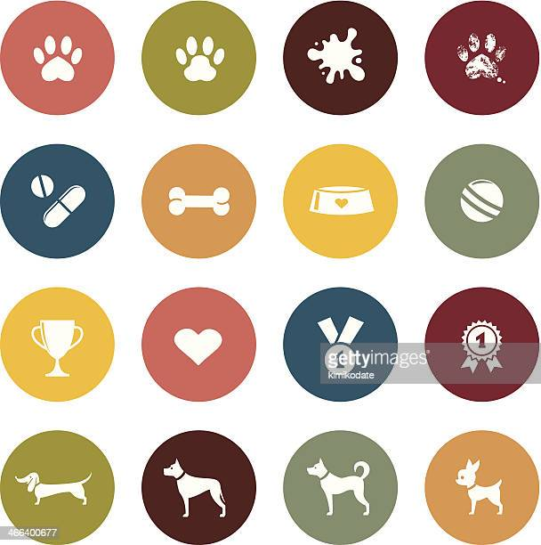colorful collage of dogs and dog toys - dog bowl stock illustrations, clip art, cartoons, & icons