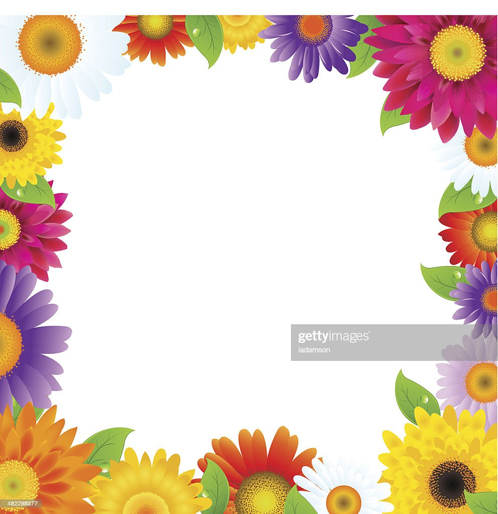 Colorful Gerbers Flower Frame