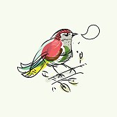 Colorful hand drawn bird