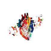 Colorful human heart design