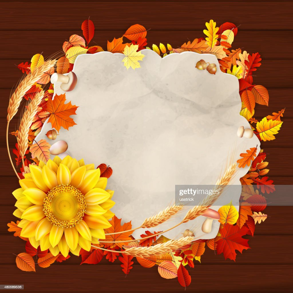 Colorful leaves background. EPS 10 : Vector Art