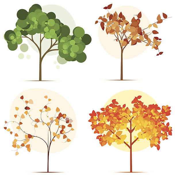 Colorful Seasonal Trees Wall Art