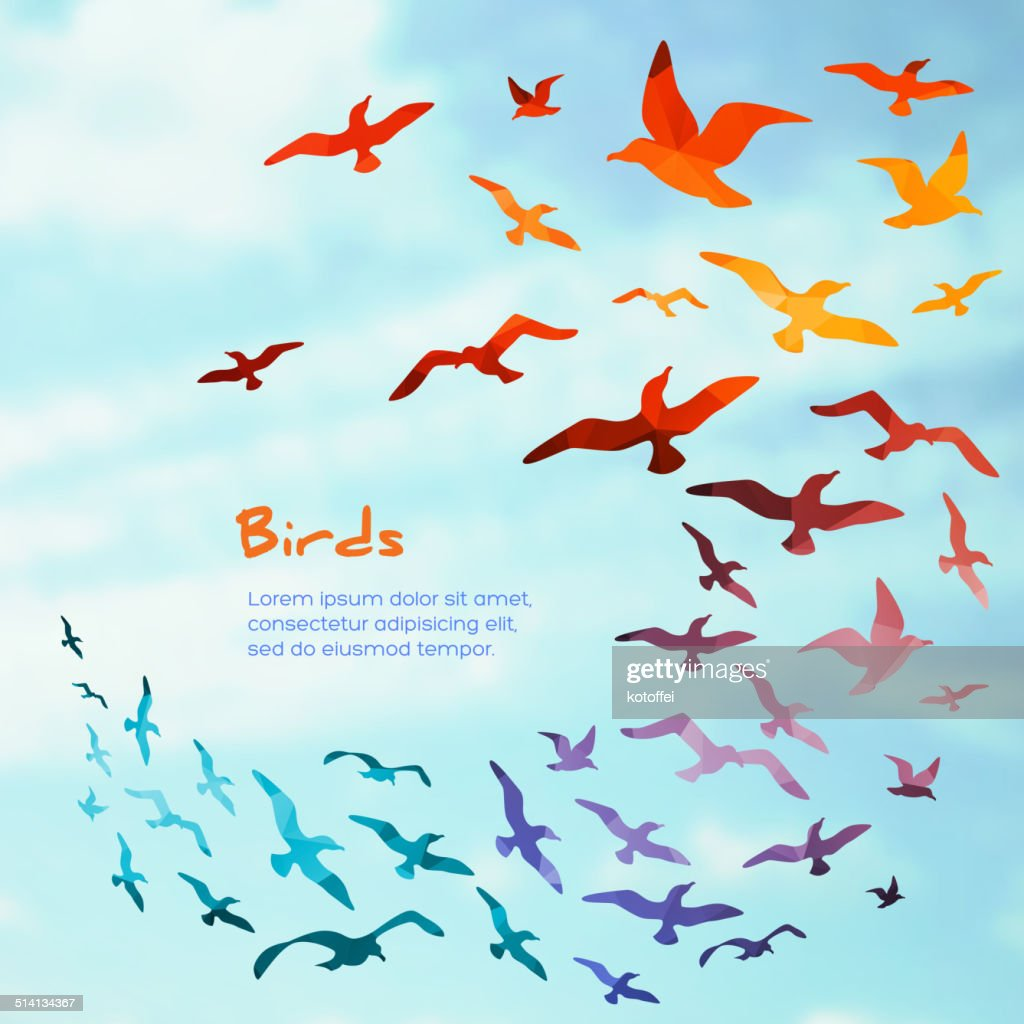 Colorful silhouettes of flying birds.