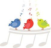 Colorful singing birds cartoon