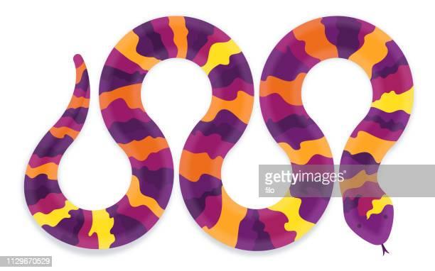 colorful snake - snakeskin stock illustrations