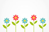 Colorful spring daisy flowers background.
