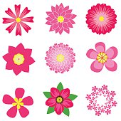 colorful spring flowers collection vector illustration