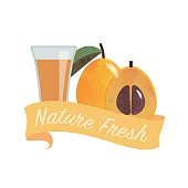 Colorful watercolor texture vector nature organic fresh fruit juice banner laquat medlar