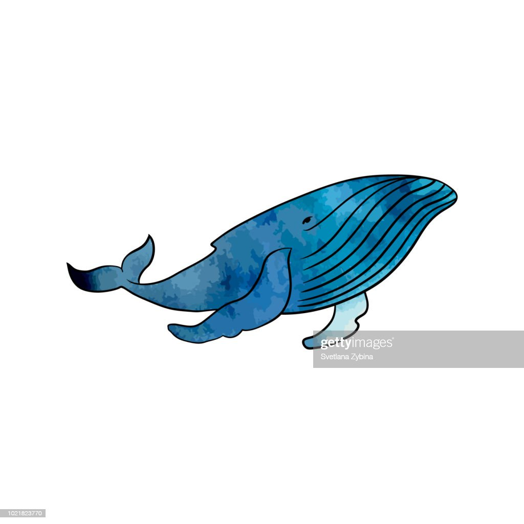 Colorful whale on a transparent background. Vektor.
