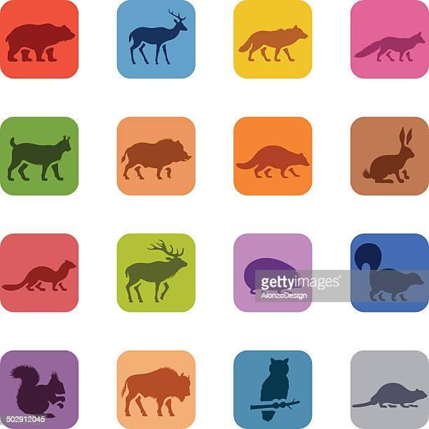 colorful wild animals icon set - european bison stock illustrations, clip art, cartoons, & icons