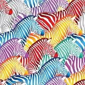 Colorful zebra seamless pattern.