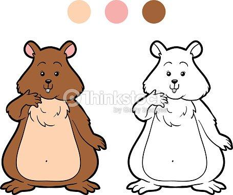 Livro De Colorir Para Criancas Hamster Arte Vetorial Thinkstock