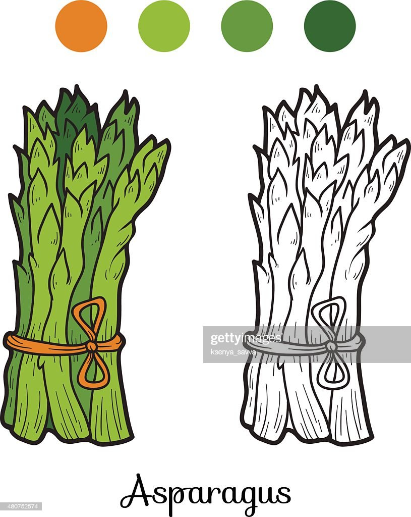 Coloring Book Fruits And Vegetables Vector Art | Getty Images