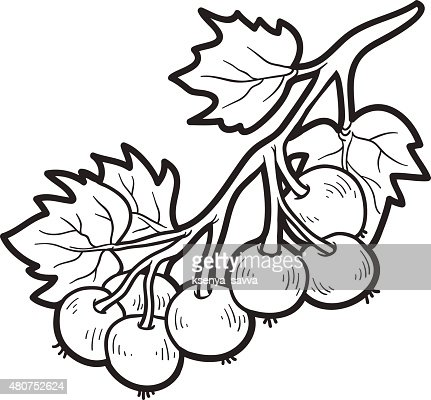 Coloring Book Fruits And Vegetables Stock Illustration Getty Images
