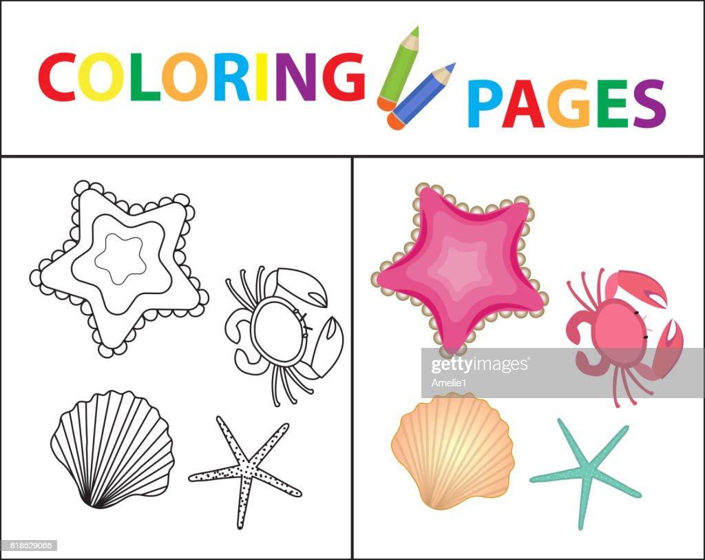 Coloring Book Seite Satz Sterne Muschel Krabbe Perle Skizze Kontur ...