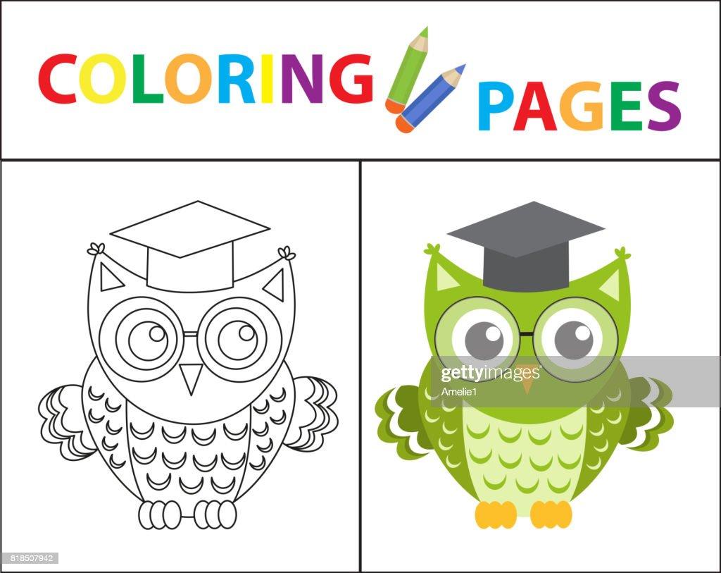 Coloring Book Seite Weise Eule Mit Brille Skizze Kontur Und Farbe ...