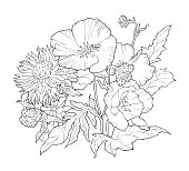 Coloring book with hand drawn flowers. Black and white illustration.
