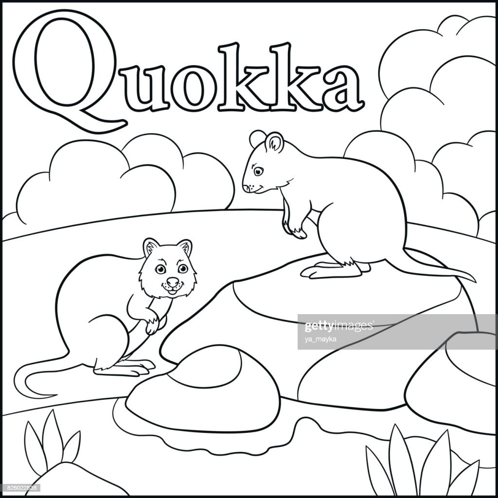 Coloring Page. Cartoon Animals Alphabet. Q Is For Quokka. : Vector Art
