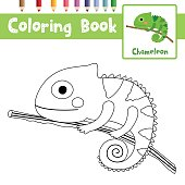 Coloring page Chameleon on branch animal cartoon character vector illustration