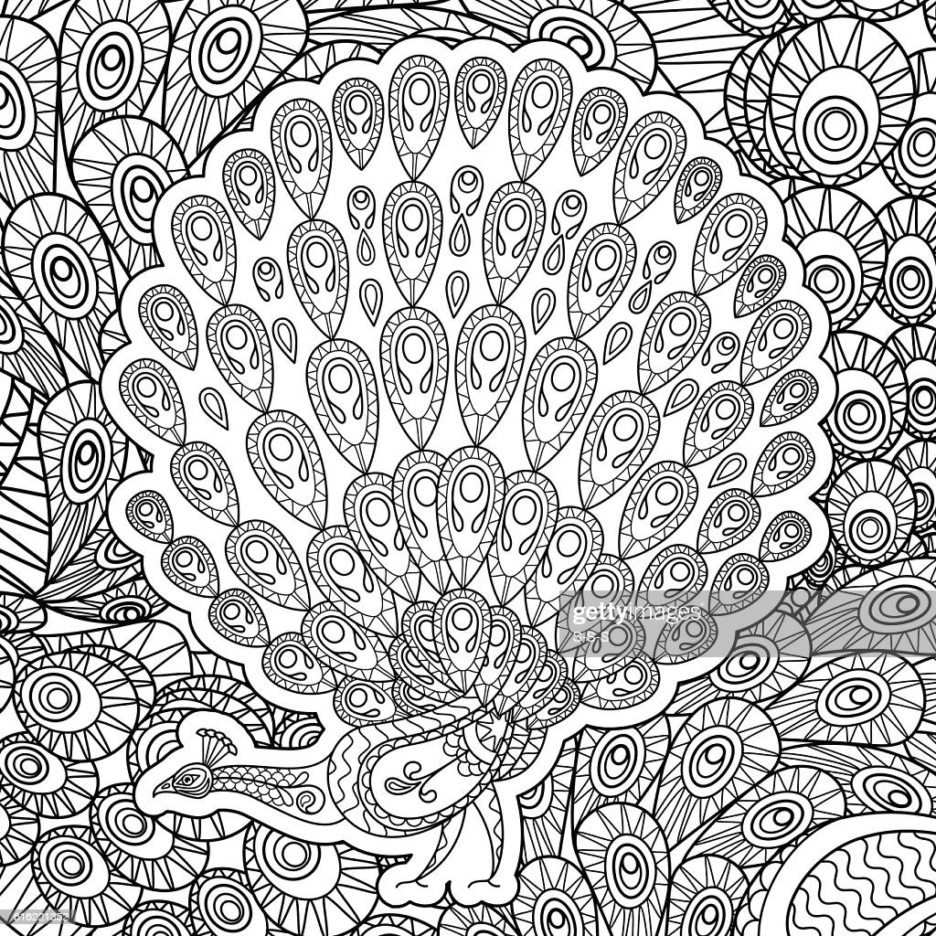Coloring page for adults with Peacock : Vector Art